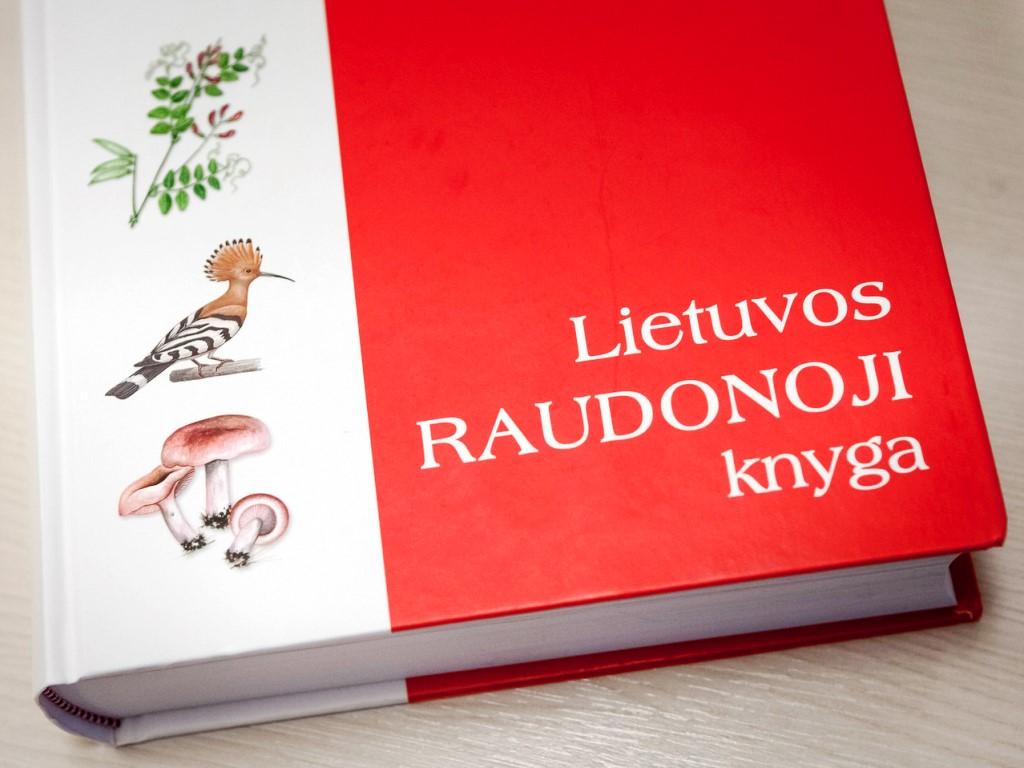 pažinčių svetainė raudonoji knyga pažintys poros riedutininkams